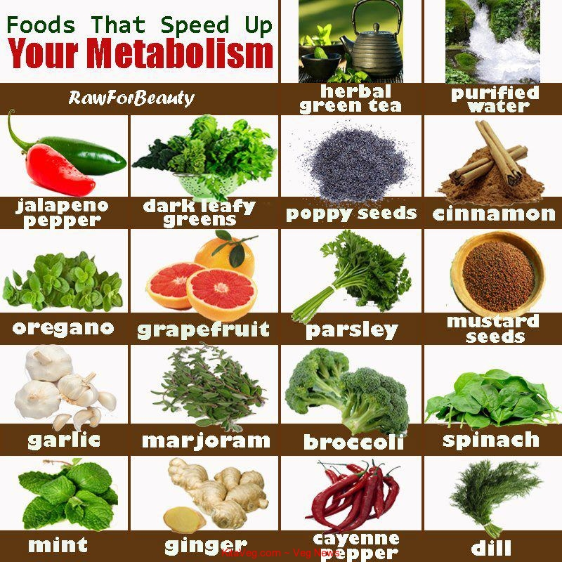 Food that speed metabolism journal